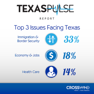 An infographic from the consumer research report Texas Pulse highlighting the most important issues facing Texas.